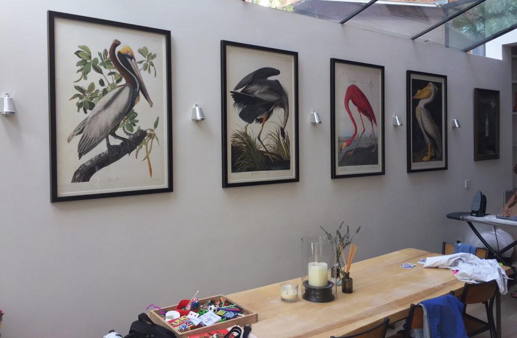 Testimonal Audubon giclee prints