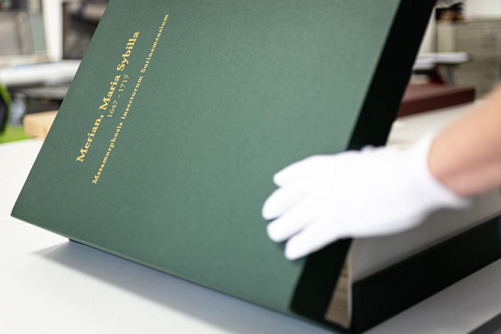 Solander Box - Maria Sibylla Merian - Metamorphosis insectorum Surinamensium (2nd edition) – Museum quality giclee print by Heritage Prints