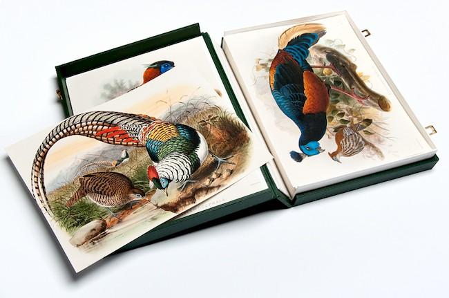 Heritage Prints Complete Sets Unique Collector Sets