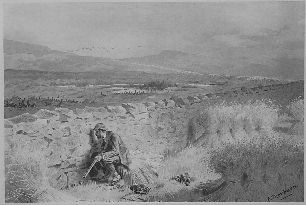 Audubon - the decline of the Pinnated Grouse