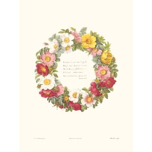 Intro Rosary by Pierre Joseph Redouté. Les Roses. Heritage Prints. Facsimile Giclee Print taken from the original edition. Certificate of authenticity included.