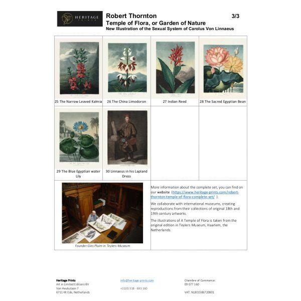 Robert Thornton Temple of Flora Overview 3/3