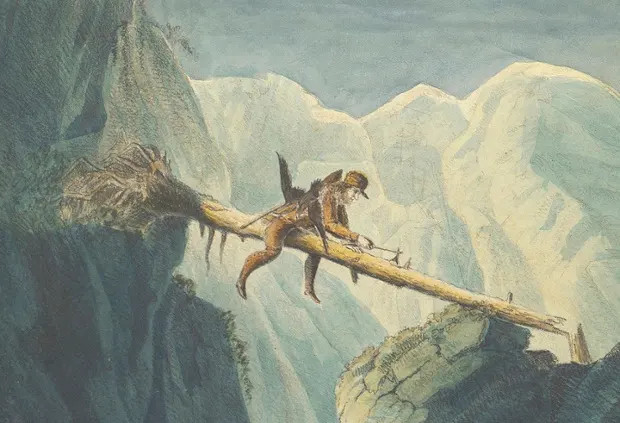 Audubon's Birds of Prey and the missing hunter